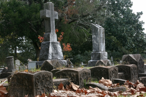 covington-cemetery-head-stones-leaves-color-watermark