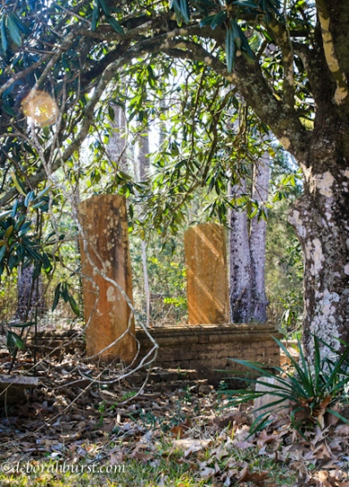 Jewish Cemetery Clinton Magnolia vert