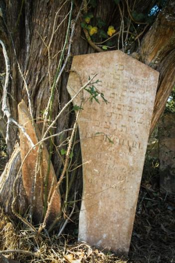 Jewish Cemetery Clinton