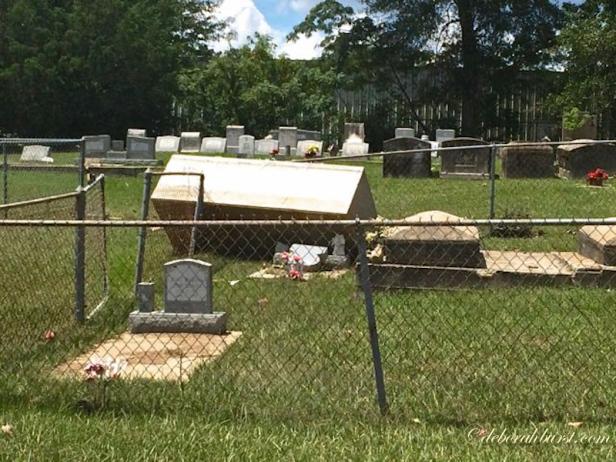 Springfield cemetery wm-5